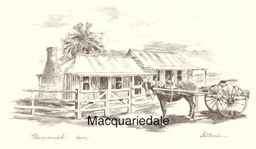 Macquariedale $15 (A4 print)