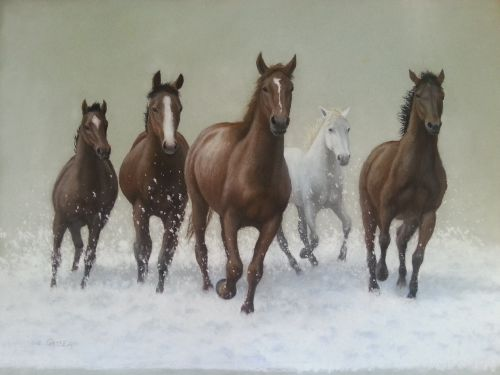 High Country Brumbies, $950, 48x68cm