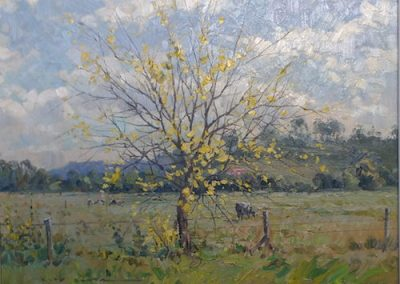Brownlow Hill Autumn, $700, 46x36cm