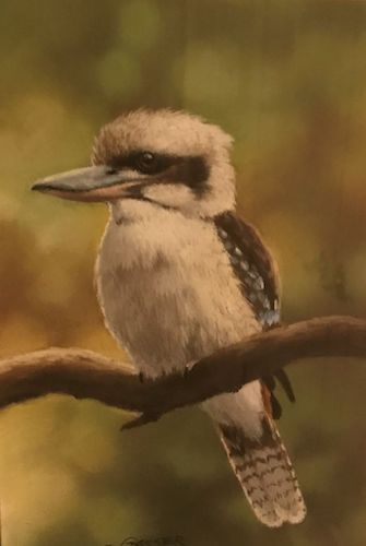 Kookaburra, $425, 25.5x17.5cm (re-sale)