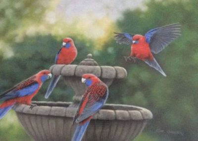 Garden Chatter, $2300, 51x70.5cm (re-sale)
