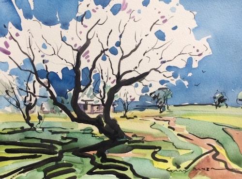Gary Baker, Spring Blossom, $460, 28x21cm